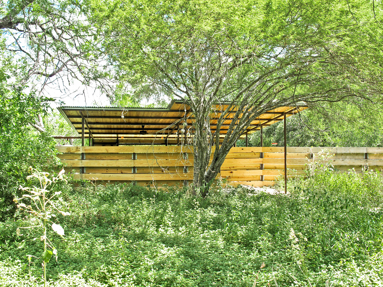 san antonio botanical gardens graham martin studios